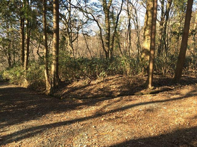 今回の土地は別荘地の南側に位置します。前面道路は未舗装です。