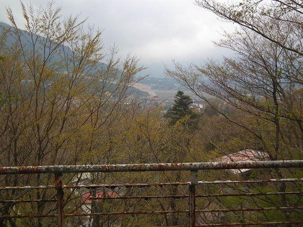 仙石原 高台の土地