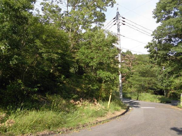 道路からは緩やかに登る、土地の形状です。