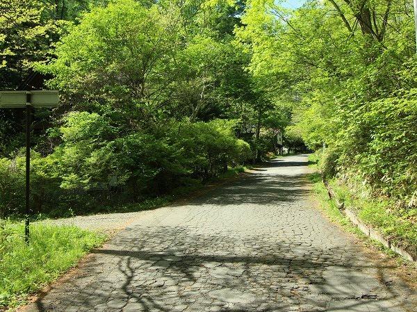 前面道路は広く舗装されており使い勝手がいい土地です。もちろん車道りも少ないですよ。